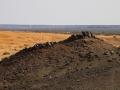 land breaks up